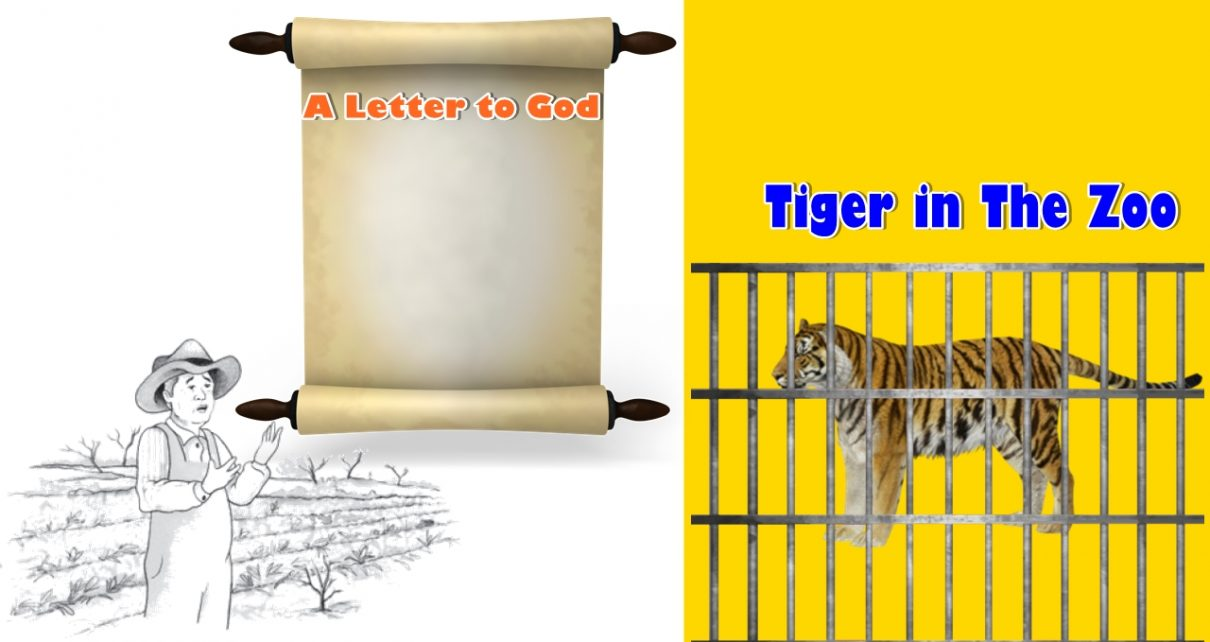 A Letter to God and Tiger in The Zoo